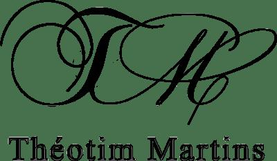 Théotim Martins, Magicien et Mentaliste Professionnel